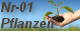 Nr-01 Pflanzenversand